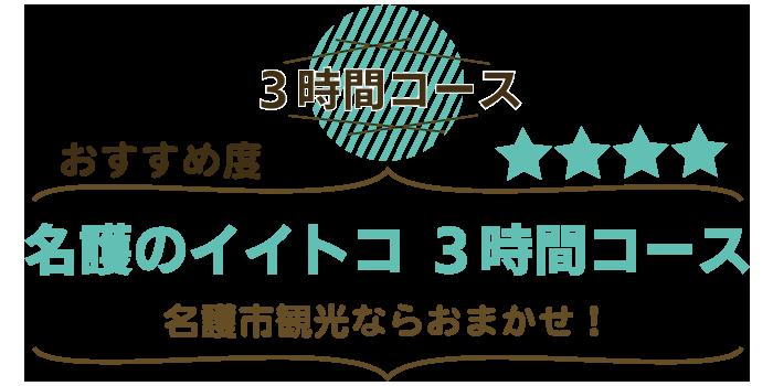 沖縄名護市観光タクシー3時間コース