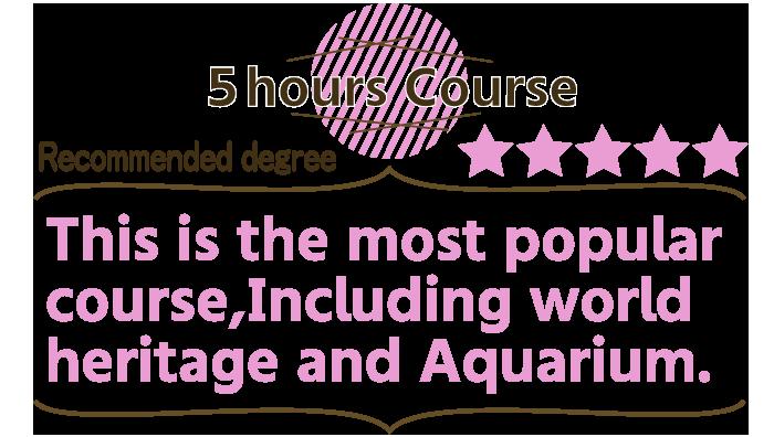 沖縄美ら海水族館も世界遺産も5時間コース
