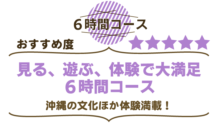 沖縄文化体験 6時間コース