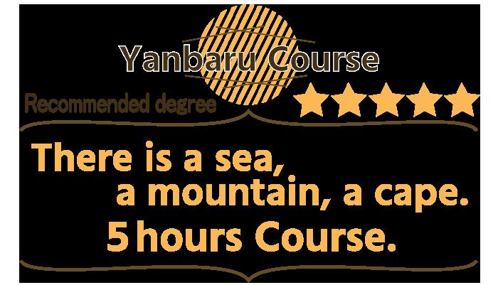 沖縄絶景コース ヤンバルの自然満喫 6時間コース