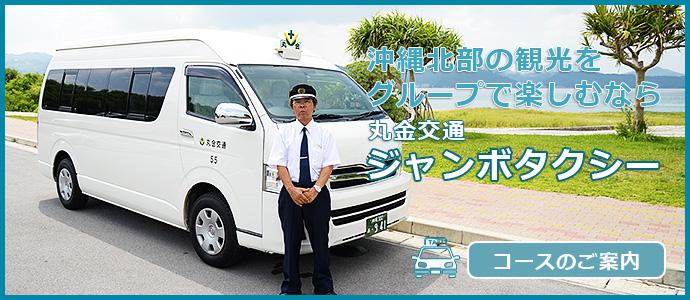 団体様向け観光ジャンボタクシー沖縄北部