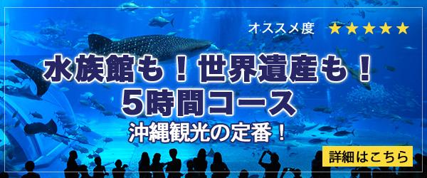 沖縄北部観光タクシー 美ら海水族館タクシー