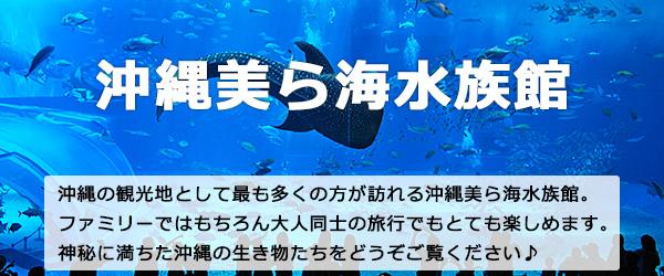 沖縄北部美ら海水族館